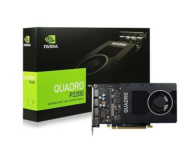 Quadro®_P22000.1