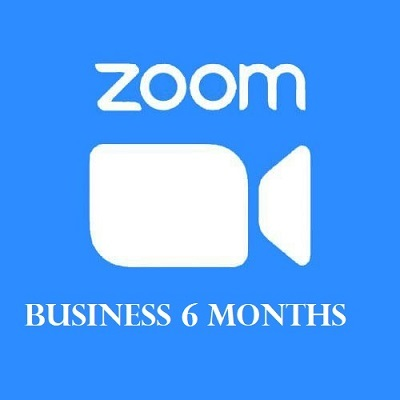 Zoom-Business-6months